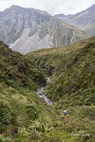 bush bash down curtis creek nouvelle zélande canyoning